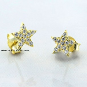 Star Silver Earrings with Cz Zirkonia